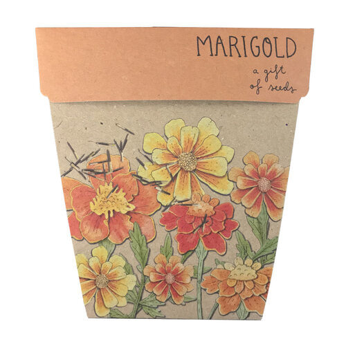 Gift of Seeds - Marigold