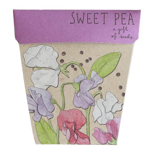Gift of Seeds - Sweet Pea